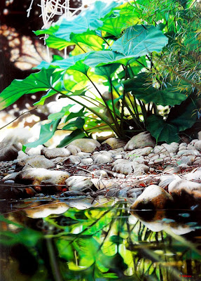 paisajes-fotorrealistas