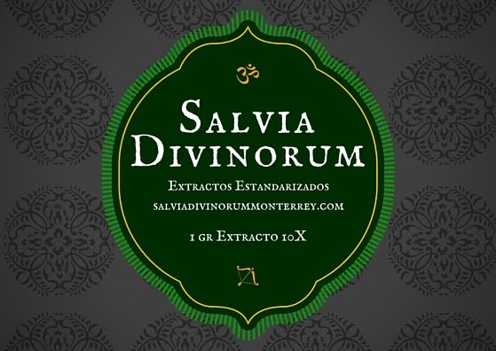 Extractos de Salvia Divinorum 10X