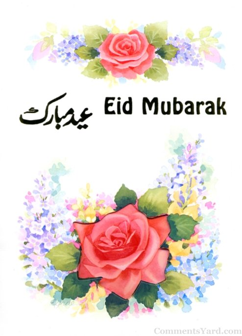 Eid mubarak pictures photos for whatsapp bbm facebook 2017 ramadan red rose urdu eid mubarak card m4hsunfo Image collections