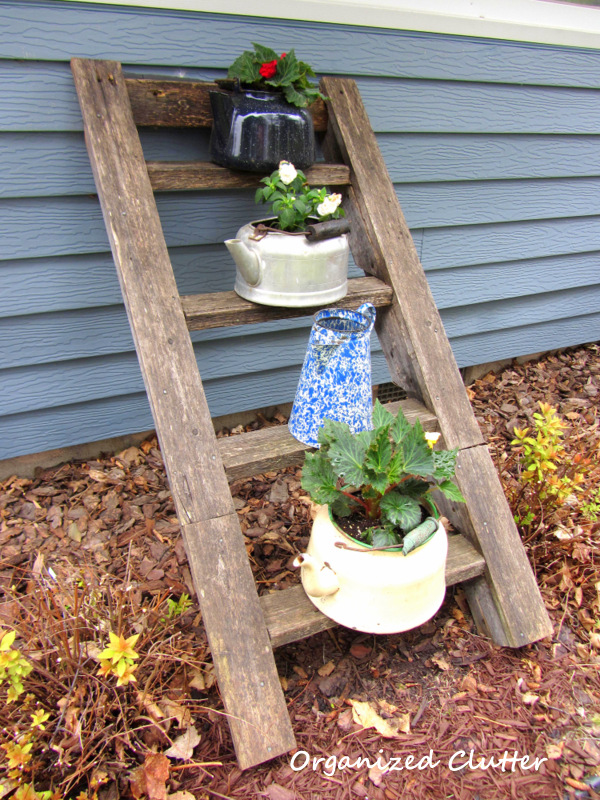 Rescued Tree House Ladder with Tea Kettles www.organizedclutterqueen.blogspot.com