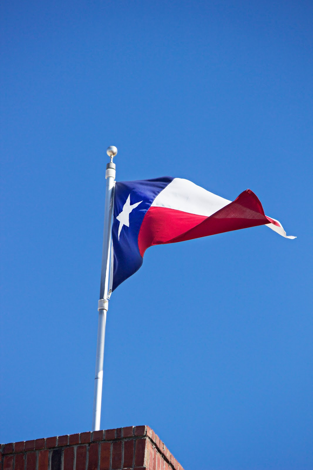 texas flag flowing in the wind