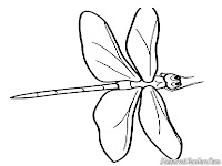 Dragonfly Coloring Sheet Free
