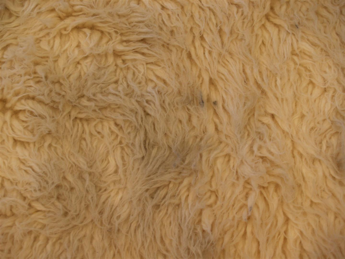 how to deep clean a rug
