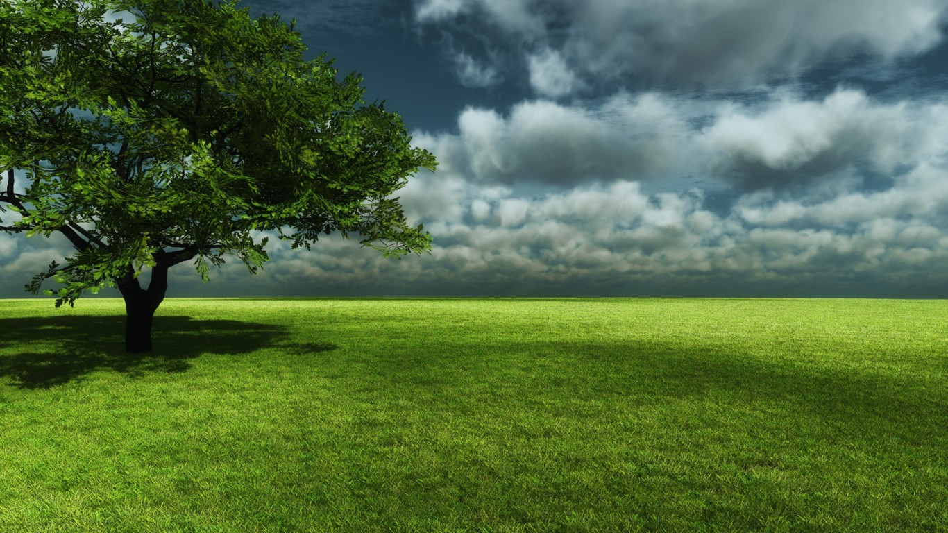 http://3.bp.blogspot.com/-8SHlHL_mWik/T3dGXVSf3MI/AAAAAAAAC-s/TplToKnNnE8/s1600/Creative-3d-tree-nature-wallpapers-background.jpg