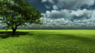 Creative 3d tree nature wallpapers