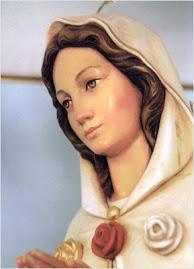 Sitio dedicado a Maria Rosa Mistica