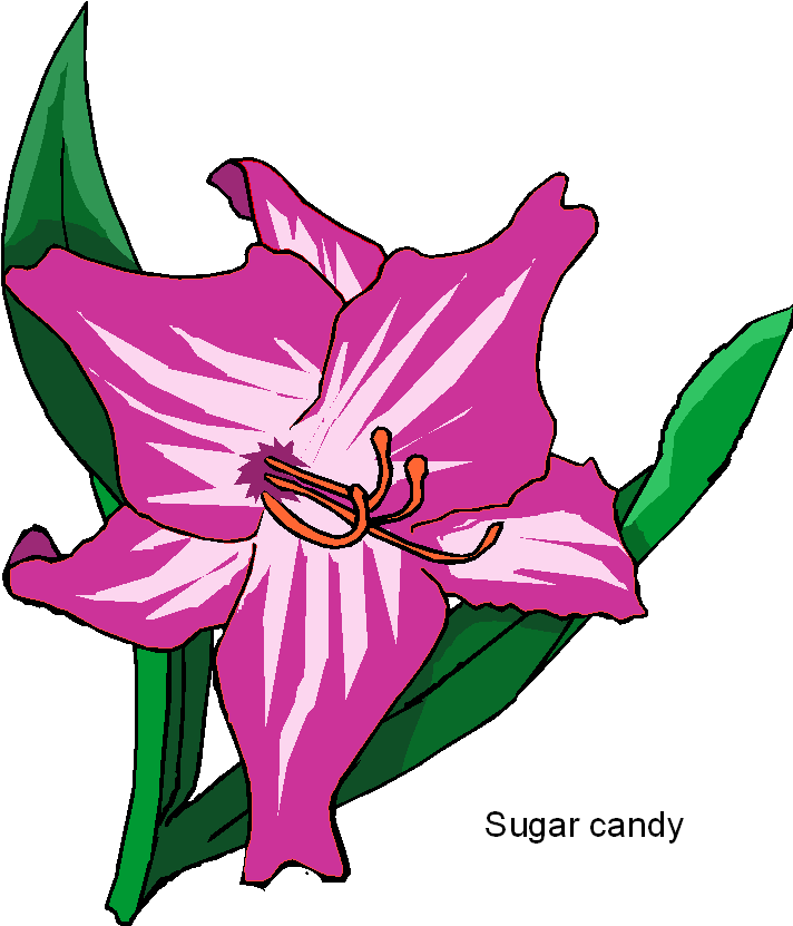 Sugar Candy Flower Clipart