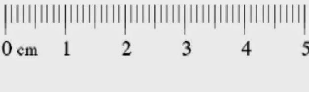 rules_cm_20cm.jpg
