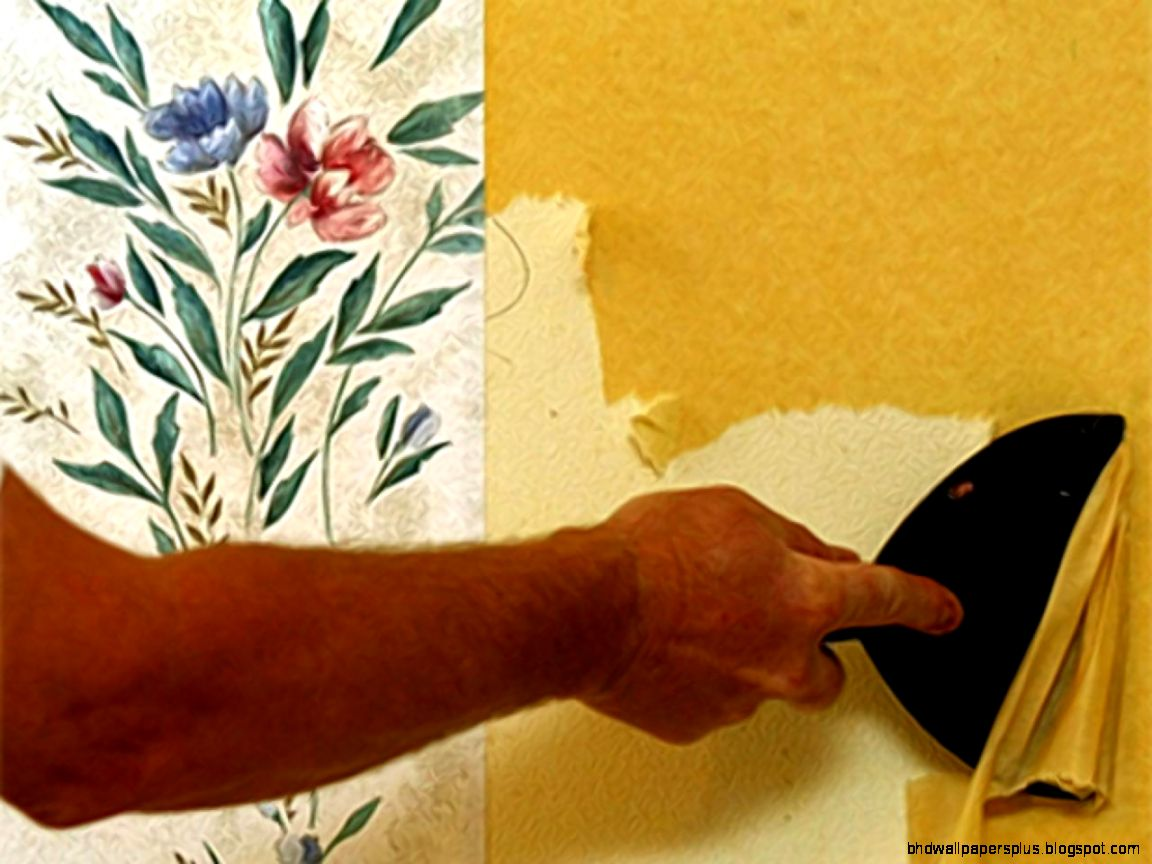 How to Remove Wallpaper  Interior Design Styles and Color Schemes