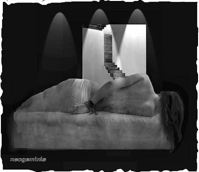 imagen para la convocatoria 'La Quietud de la Noche'