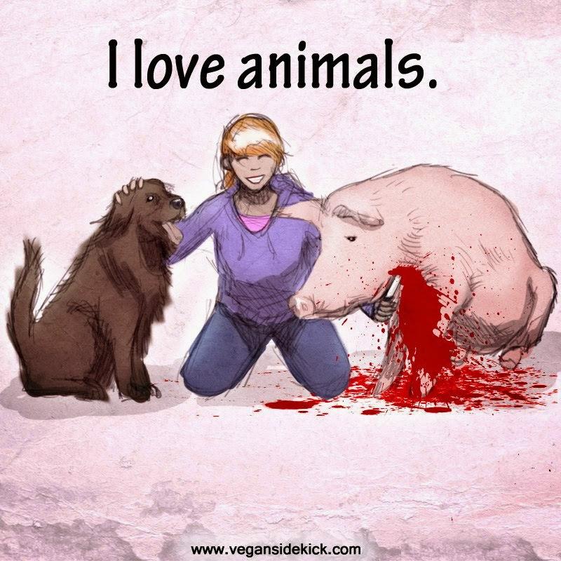 Animal love memes - photo#4