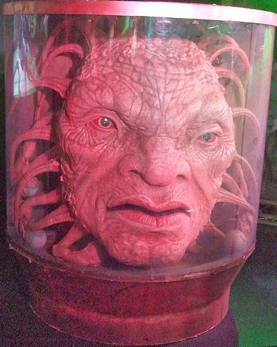Doctor Who Face of Boe WWE Bo Dallas NXT