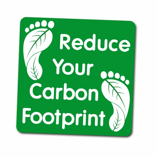 essays on carbon footprint Abstract this report examines the concept and value of measuring and reducing a business or product carbon footprint as well some renewable.