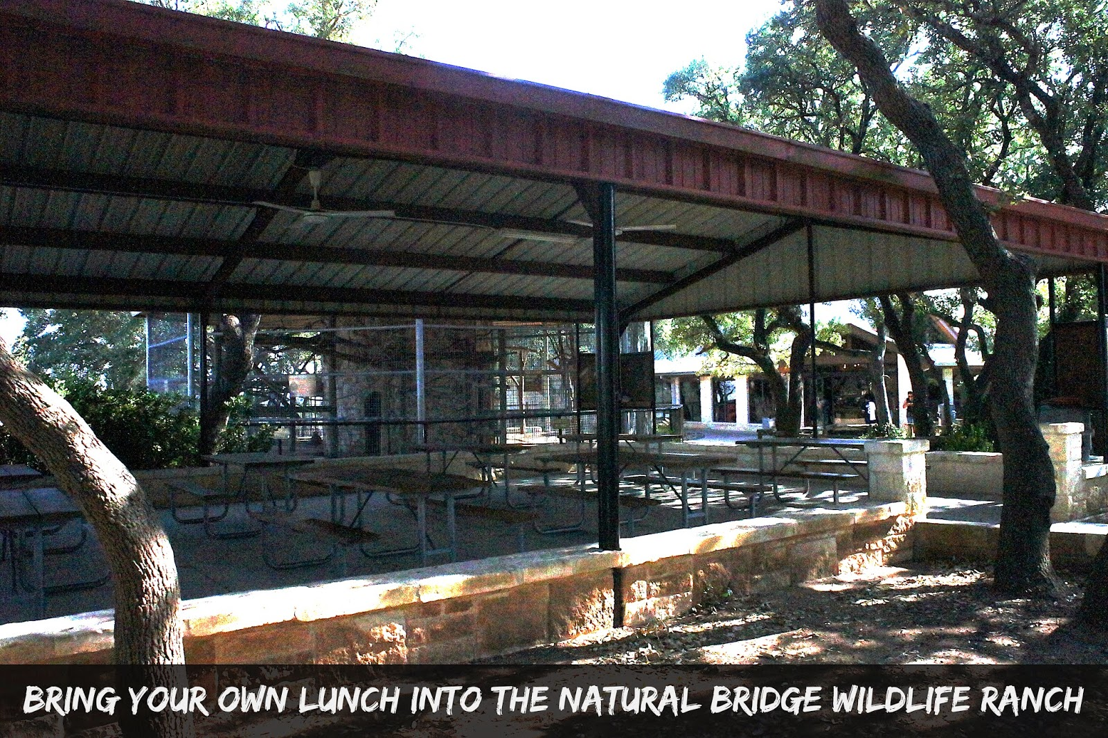 Family Picnics at the Natural Bridge Wildlife Ranch in San Antonio, Texas