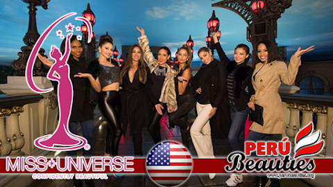 Eiffel Tower Experience - Miss Universe 2015