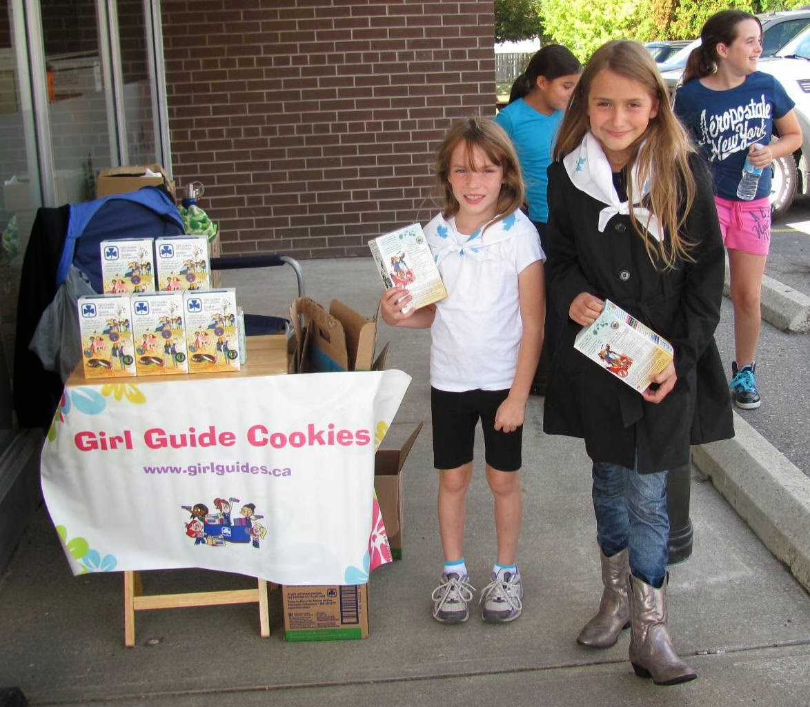 chocolate mint cookies girl guides