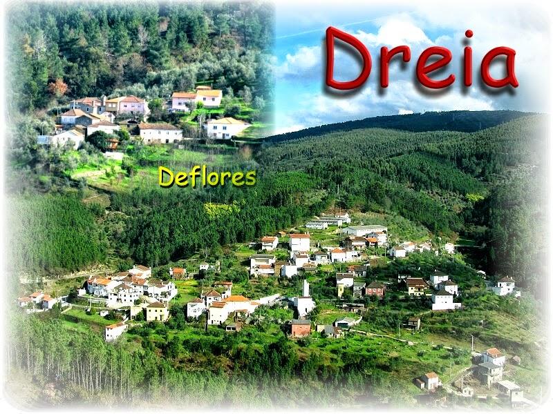 Bem-vindo à Dreia