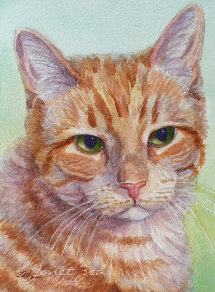 Janet Zeh Original Art Watercolor And Oil Paintings Cat