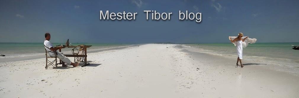 Mester Tibor