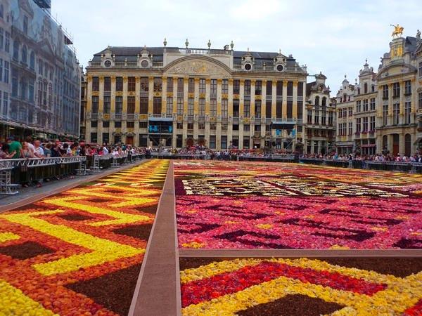Bruksela Dywan kwiatowy