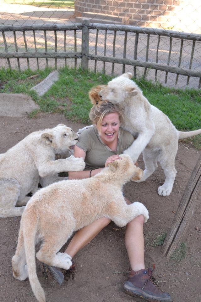 Disseram que era divertido brincar com filhotes de leão. Ela acreditou.