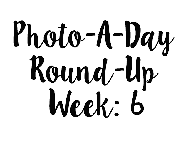 White background with black script text reading photo a day round up week 6