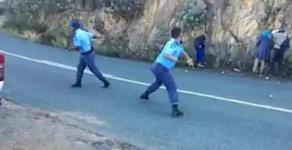 Σάλος για το βίντεο που δείχνει αστυνομικούς να «λιθοβολούν» κλέφτες με μήλα