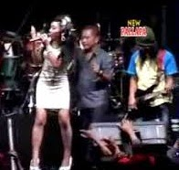 All Artis New Pallapa - Bintang Pentas