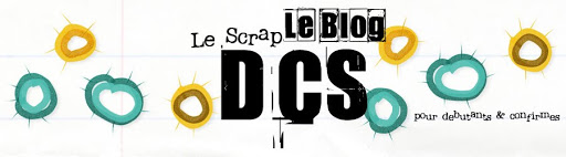 Blog du Forum DCS