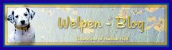 Unser D- Wurf ist geboren !! Bitte auf das Banner klicken