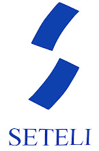 SETELI ryn logo