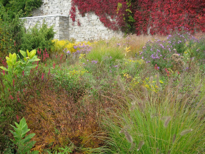 The garden wanderer the toronto botanical gardens piet for Piet oudolf fall winter spring summer fall