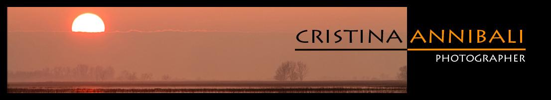 CRISTINA ANNIBALI - Photographer