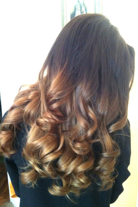 More of the Ombre HairOmbre Hair Brown To Blonde Back