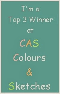 CAS Colours and Sketches Winner!