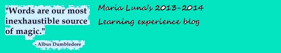 Maria Luna's 2013-2014 learning experience