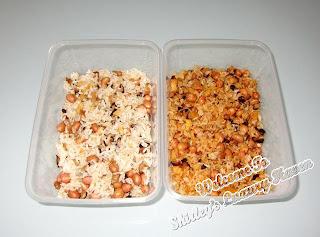 glutinuous rice, peanuts, dried shrimps, hay bee hiam