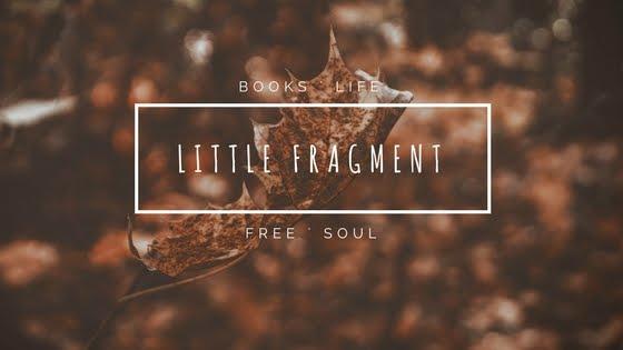 Little Fragment
