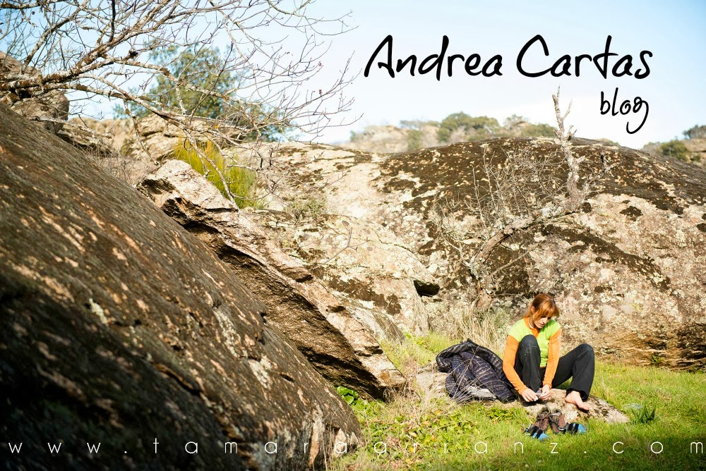 .Andrea Cartas Blog