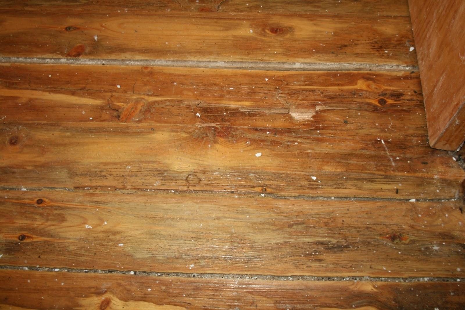 Peritararquitectura pudrici n de solado de madera - Madera machihembrada exterior ...