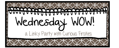 http://curiousfirsties.blogspot.com/2014/02/a-wednesday-wow-birthday.html