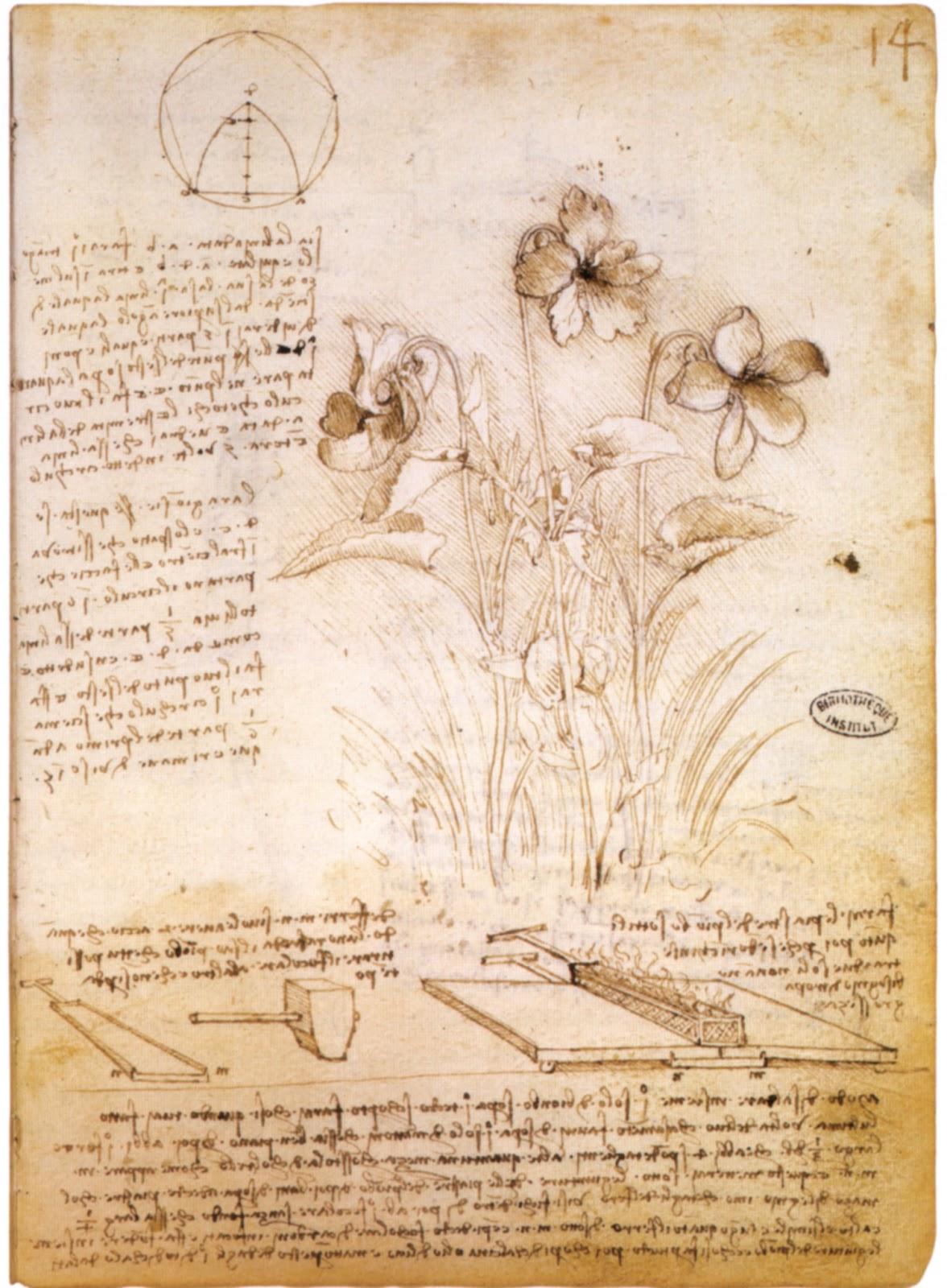 Atmósfera Comunicativa: ¿Quien fue Leonardo Da Vinci y que legado ...