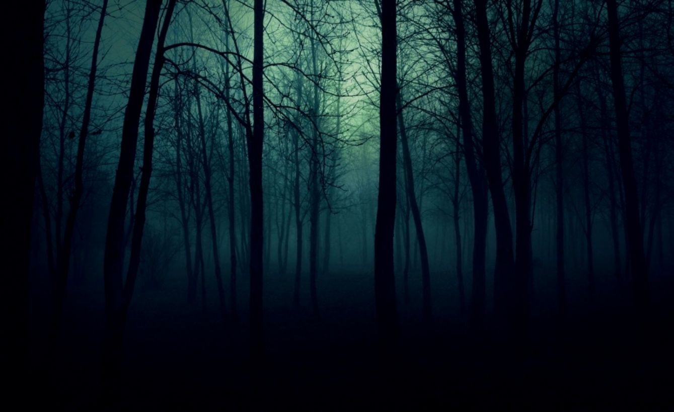 Dark Nature Wallpaper Hd Pictures to Pin on Pinterest ...
