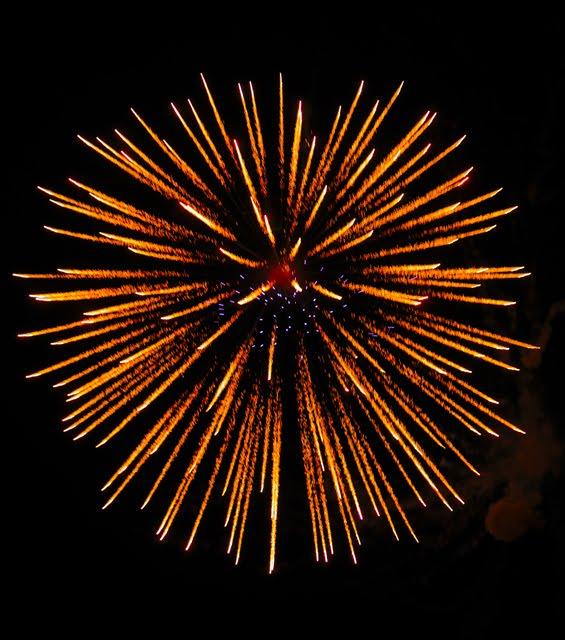 Firework 1667