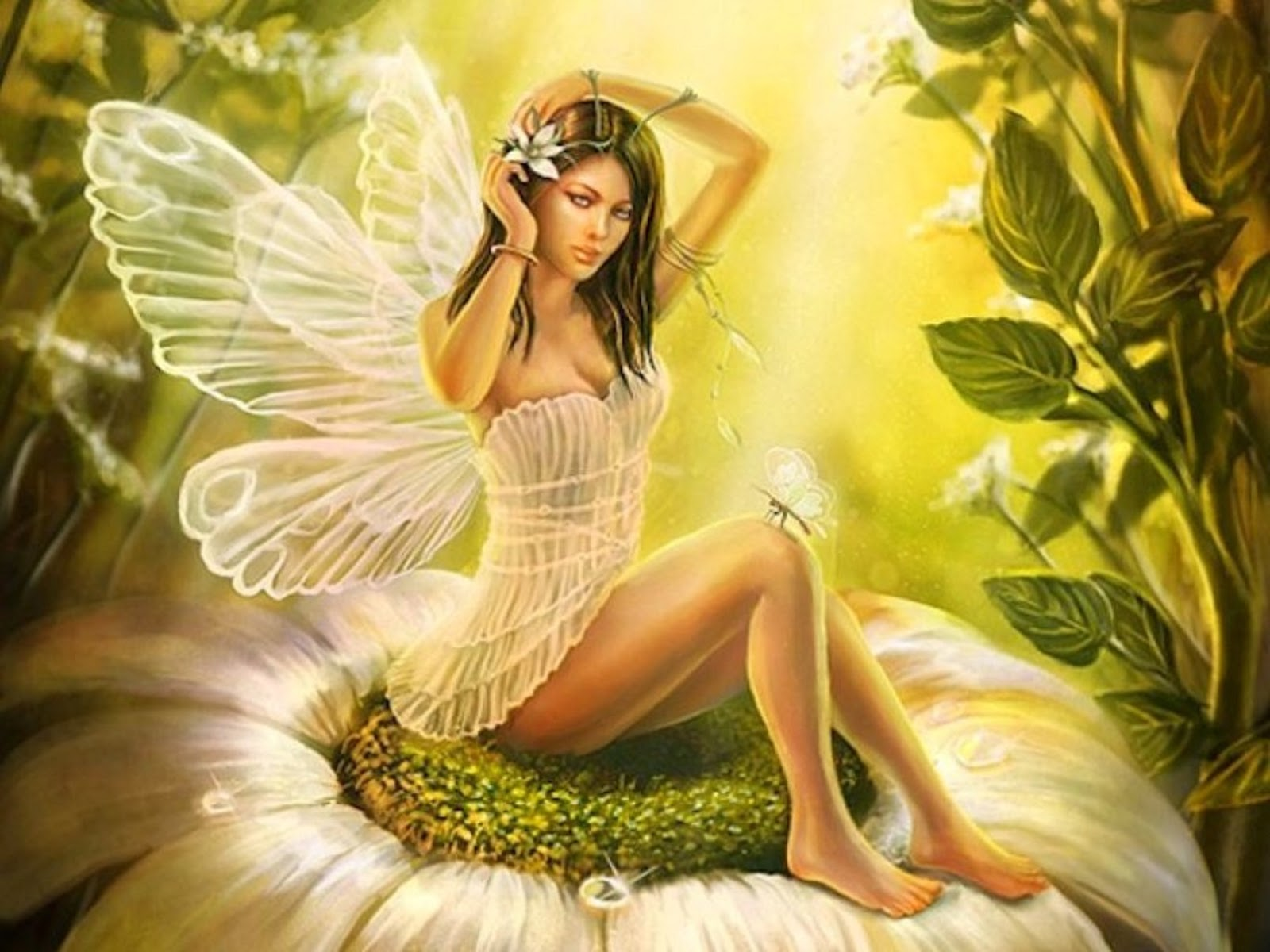 hd beautiful wallpapers fairy - photo #7