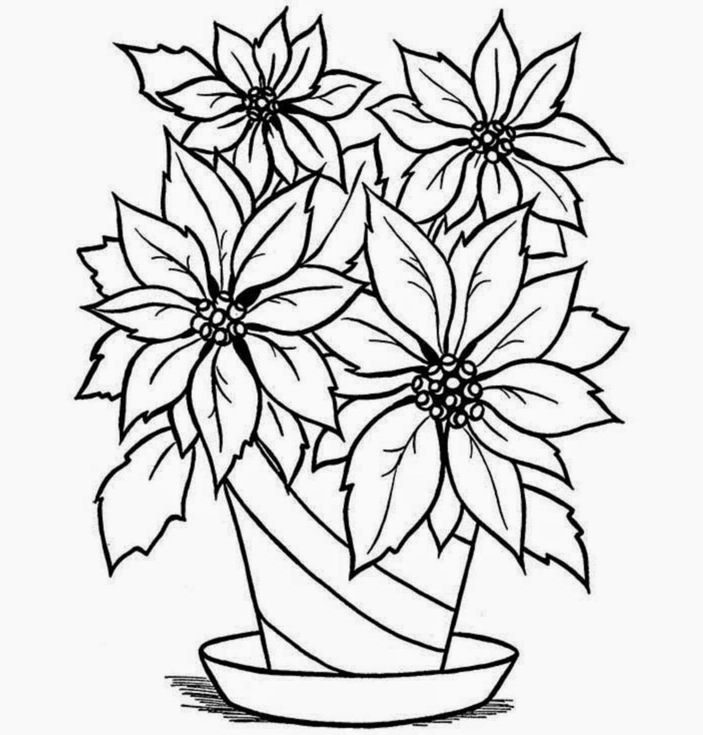 colour drawing free wallpaper flowers vase coloring drawing free