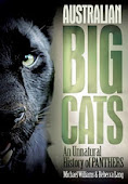 Big cats in the Aussie bush...