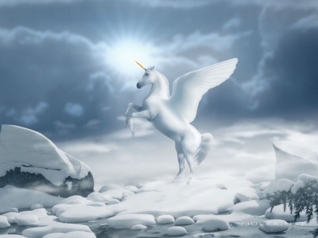 Wonderful   Wallpaper Horse Unicorn - White+Horse+Wallpapers+8  Perfect Image Reference_869573.jpg