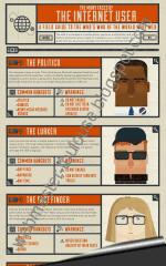 Infographie profil des internautes