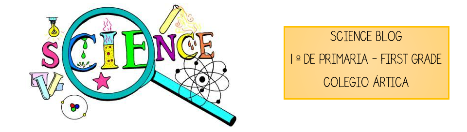 BLOG DE SCIENCE - 1º DE PRIMARIA